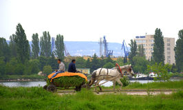 Carretto del cavallo da equitazione degli agricoltori Immagine Stock Libera da Diritti