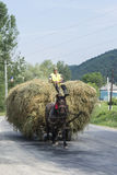 Carretto del fieno in Romania Fotografia Stock Libera da Diritti