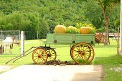 Carretto dell'azienda agricola Fotografia Stock