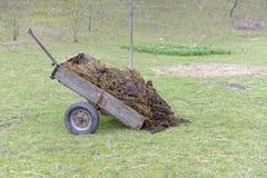 Carretto di concime nel campo, la Transilvania, Romania Immagini Stock Libere da Diritti