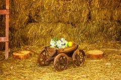 Carretto di legno con i fiori e frutti in un granaio con fieno immagine stock libera da diritti
