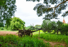 Carretto di legno stagionato sulle pianure di Bagan Immagine Stock