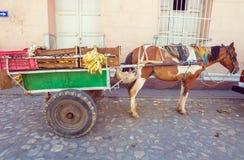 Carretto nella vecchia città, Trinidad, Cuba del cavallo Immagine Stock