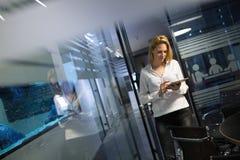 Carrière de femme d'affaires au bureau de technologie de l'information photographie stock