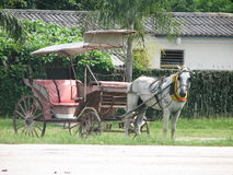 Carriage. Horse abd carriage near the house Stock Photo