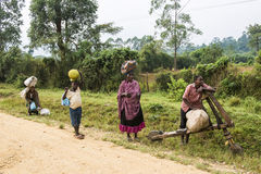 People carry loads in Africa Stock Images