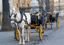 Carriage Andalusian Royalty Free Stock Photography