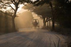 Carriage Bagan. Carriage riding at Bagan, Myanmar during sunset Stock Photos