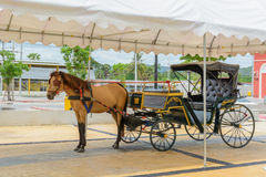 Carriage with brown horse Stock Photos