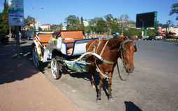 Carriage ( cart) for travel (tour) Stock Photography