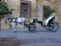 Carriage in Cordoba Stock Photos
