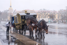 The carriage drawn by two horses at the Palace Square Stock Photography