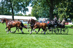 Carriage drive show. In strzegom at HSBC FEI World Cup 2009 Stock Photo
