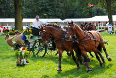 Carriage drive show. In strzegom at HSBC FEI World Cup 2009 Royalty Free Stock Images