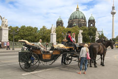 Horse-drawn carriage with coachwoman at Berliner Cathedral, Berlin Royalty Free Stock Photography