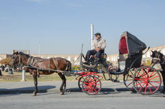 Carriage driver. A carriage driver in Naqshejahan square in Isfahan, Iran Royalty Free Stock Images