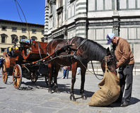 Carriage in front of Battistero di San Giovanni in Florence, Ita Stock Photography