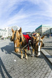 Carriage in front of Brandenburg Gate Stock Photography