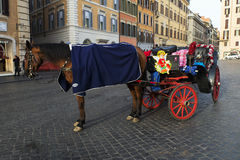 Carriage horse in Piazza di Spagna Stock Photo