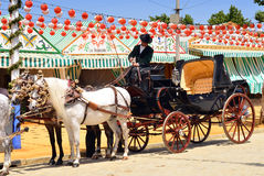 Carriage horses with coachman during Seville Spring Festival 201 Royalty Free Stock Photography