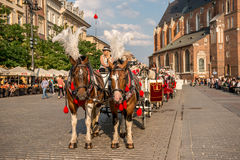 Carriage with horses, cobbled streets of Krakow Stock Image
