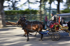 Carriage with Horses and Driver at Street of The Saddlebag Island Royalty Free Stock Photography