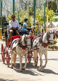 Carriage horses at the fair. In Rota in Cadiz Spain, seen some people walking. is an editorial image vertical on a sunny day Royalty Free Stock Images