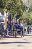 Carriage horses at the fair. In Rota in Cadiz Spain, seen some people walking. is an editorial image vertical on a sunny day Stock Photos