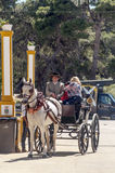 Carriage horses at the fair. In Rota in Cadiz Spain, seen some people walking. is an editorial image vertical on a sunny day Stock Image