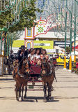 Carriage horses at the fair. In Rota in Cadiz Spain, seen some people walking. is an editorial image vertical on a sunny day Stock Photo