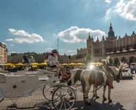 Carriage with horses near ancient square, Krakow Royalty Free Stock Images