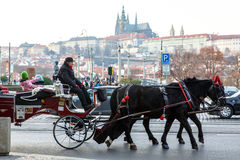 Carriage with horses  Prague (Czech Republic). Royalty Free Stock Image