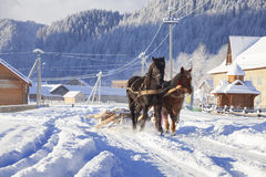 Carriage with horses in winter in village Stock Image