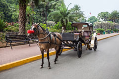 Carriage in Intramuros Stock Photo