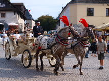 Carriage, Kazimierz Dolny, Poland Royalty Free Stock Photography