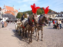 Carriage, Kazimierz Dolny, Poland Royalty Free Stock Photo