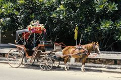 Carriage in lampang north thailand travel asia Stock Photos