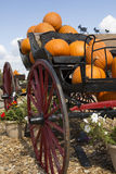 Carriage loaded with pumpkins Royalty Free Stock Photos