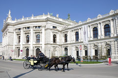 The carriage near the Burgtheater in Vienna Royalty Free Stock Photo