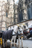 Carriage near Stephansdom, Vienna Stock Image