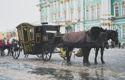 Carriage near the Winter Palace. Stock Photo