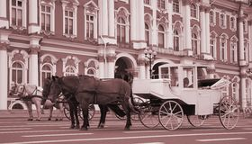 Carriage and pair Royalty Free Stock Images