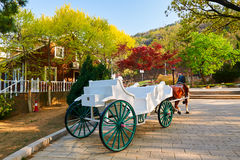 The carriage Royalty Free Stock Images