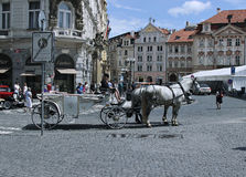 Carriage pulled by horses on the Prague street Stock Image