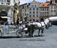 Carriage pulled by horses on the Prague street Stock Images