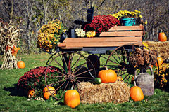 Carriage Pumpkin Display Stock Photo