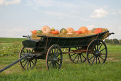 Carriage with pumpkins Royalty Free Stock Photos