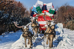 Carriage with reindeer. A carriage pulled by four reindeer with gifts Stock Photo