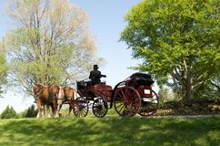 Carriage Ride. Horse drawn carriage with clydesdale horses waiting for wedding party Stock Images