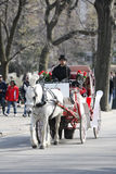 Carriage Ride in Central Park Royalty Free Stock Photo